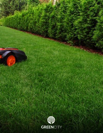 Realizacja ogrodu